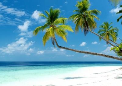 Micha Rosenwirth/Shutterstock.com // tropical beach on the maldives