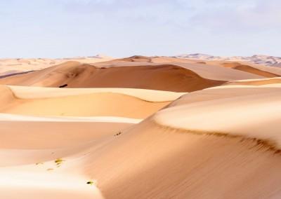 Anton-Ivanov/Shutterstock.com //Wüste Namib-Naukluft National Park, Namibia
