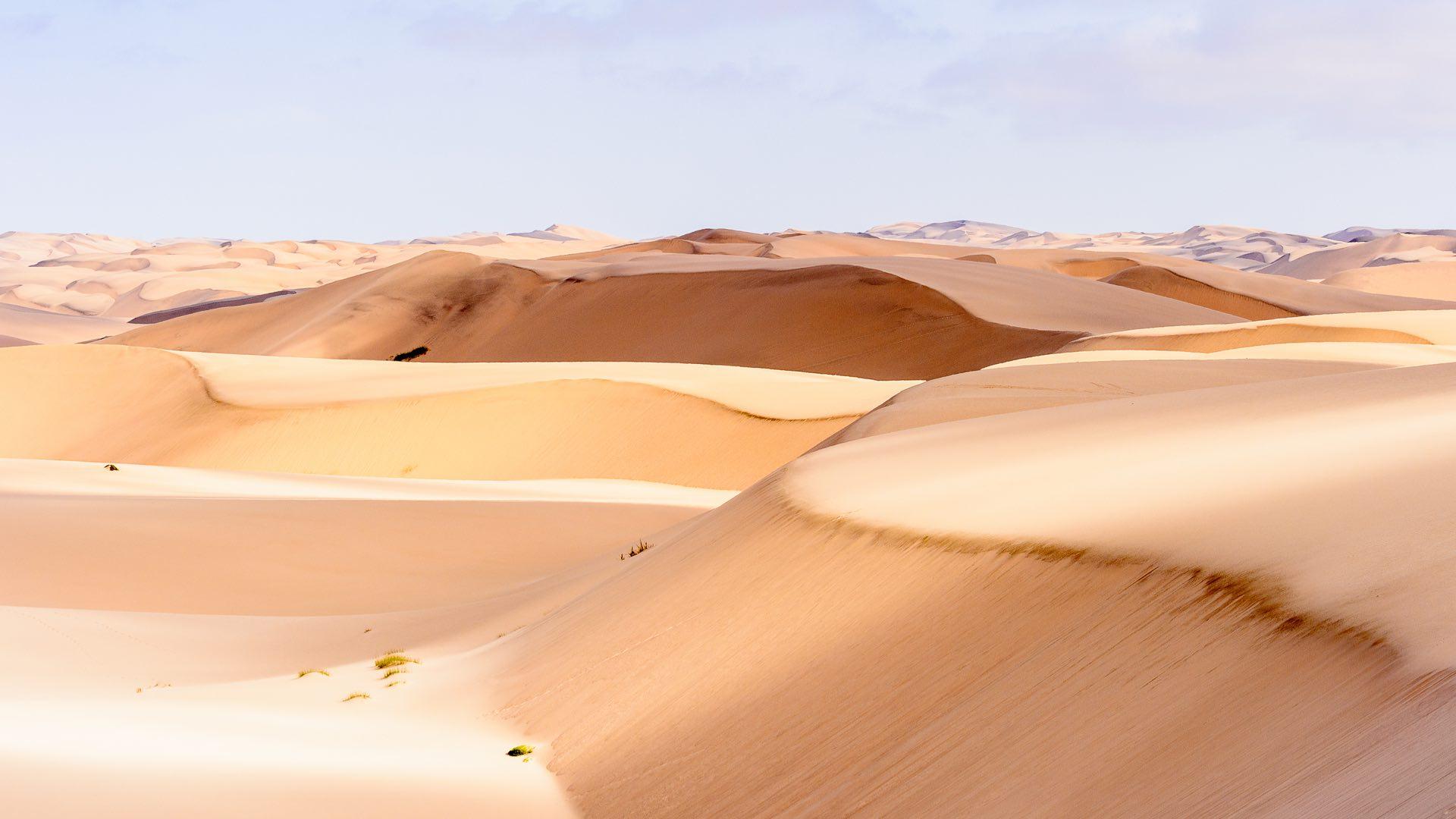 Afrika | Namibia  | ©Anton-Ivanov/Shutterstock.com
