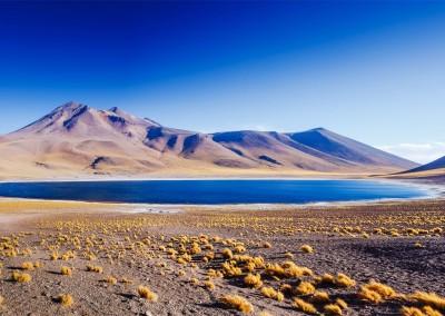 Olga Danylenko/Shutterstock.com - Amazing Lake Miscanti in the highlands of Chile near San Pedro de Atacama