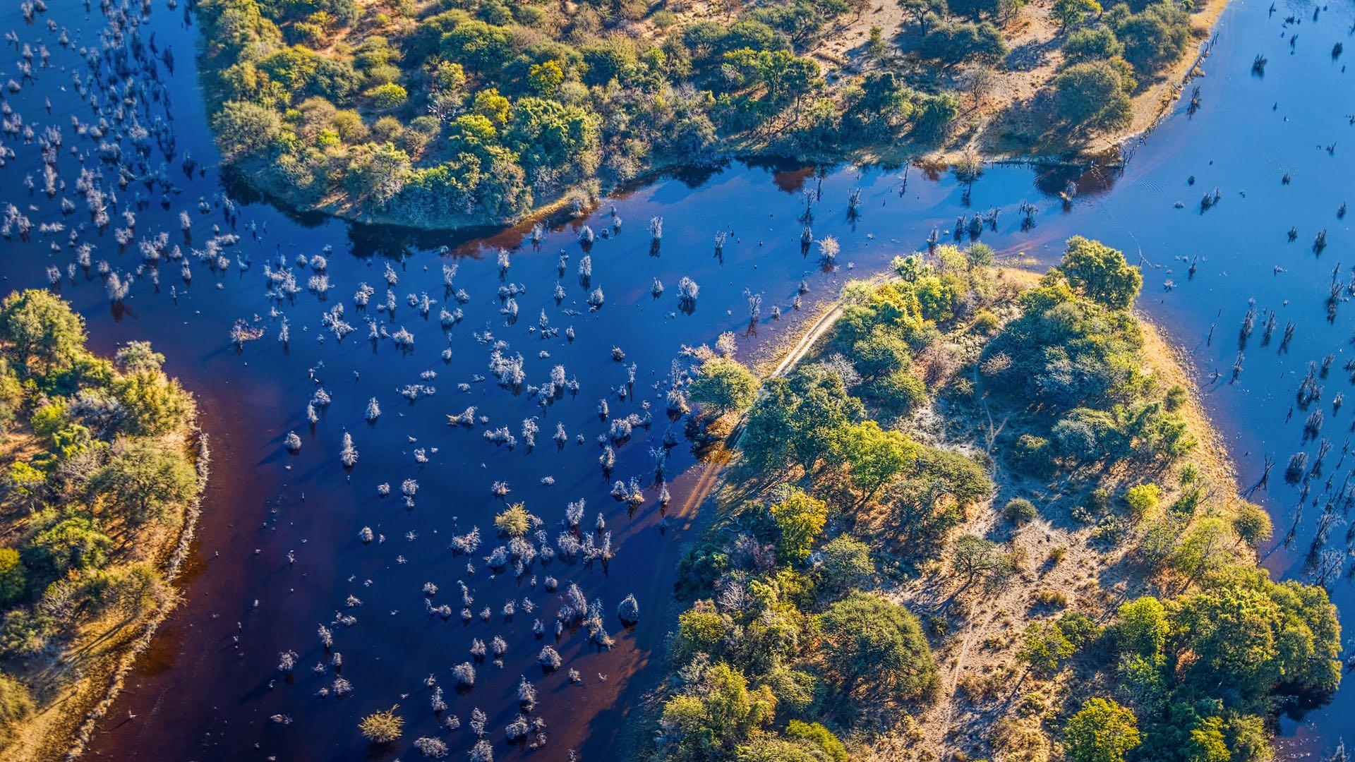 Südwestafrika| Botswana | ©Vadim Petrakov/shutterstock.com