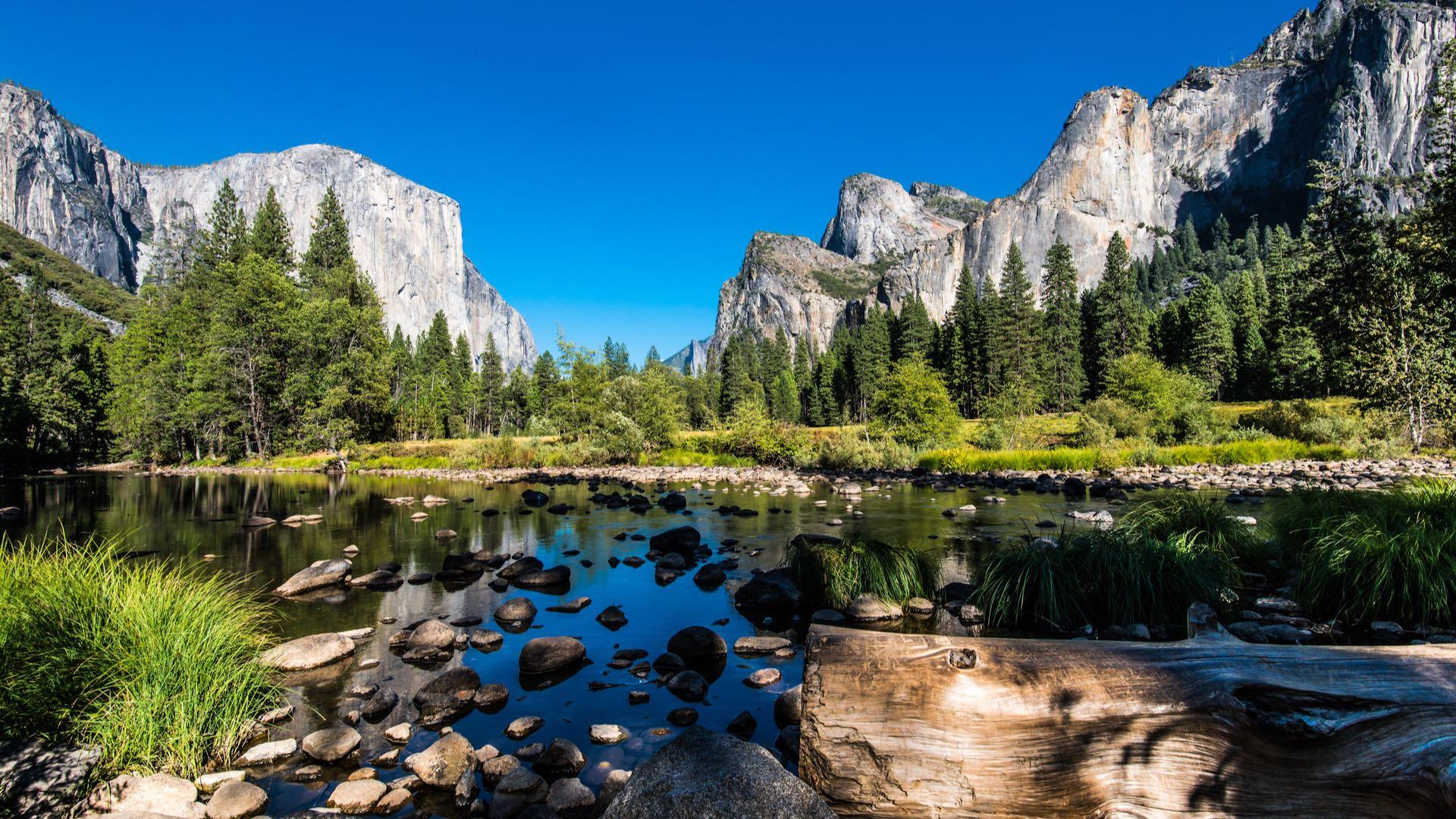 USA | Yosemite National Park | ©Mikhail Kolesnikov/shutterstock.com