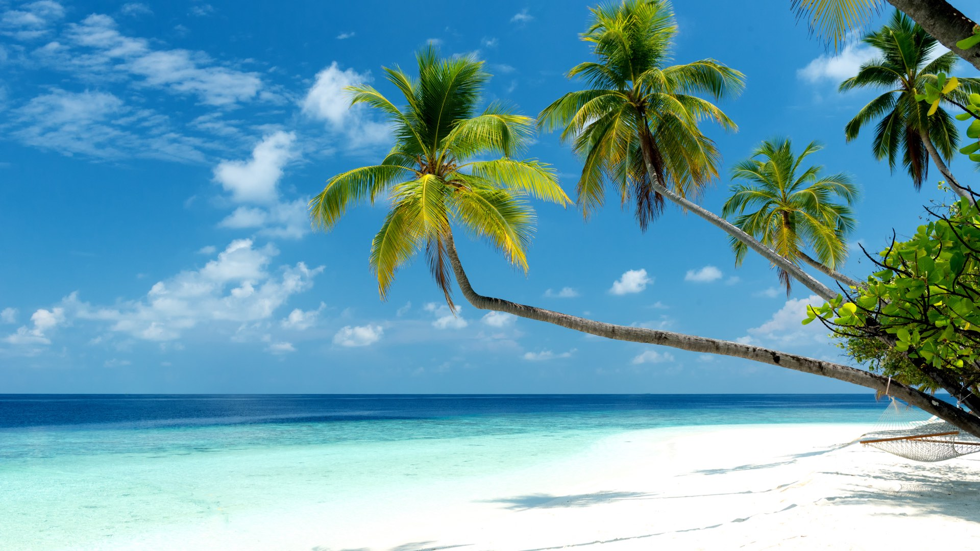 Malediven | ©Micha Rosenwirth/Shutterstock.com