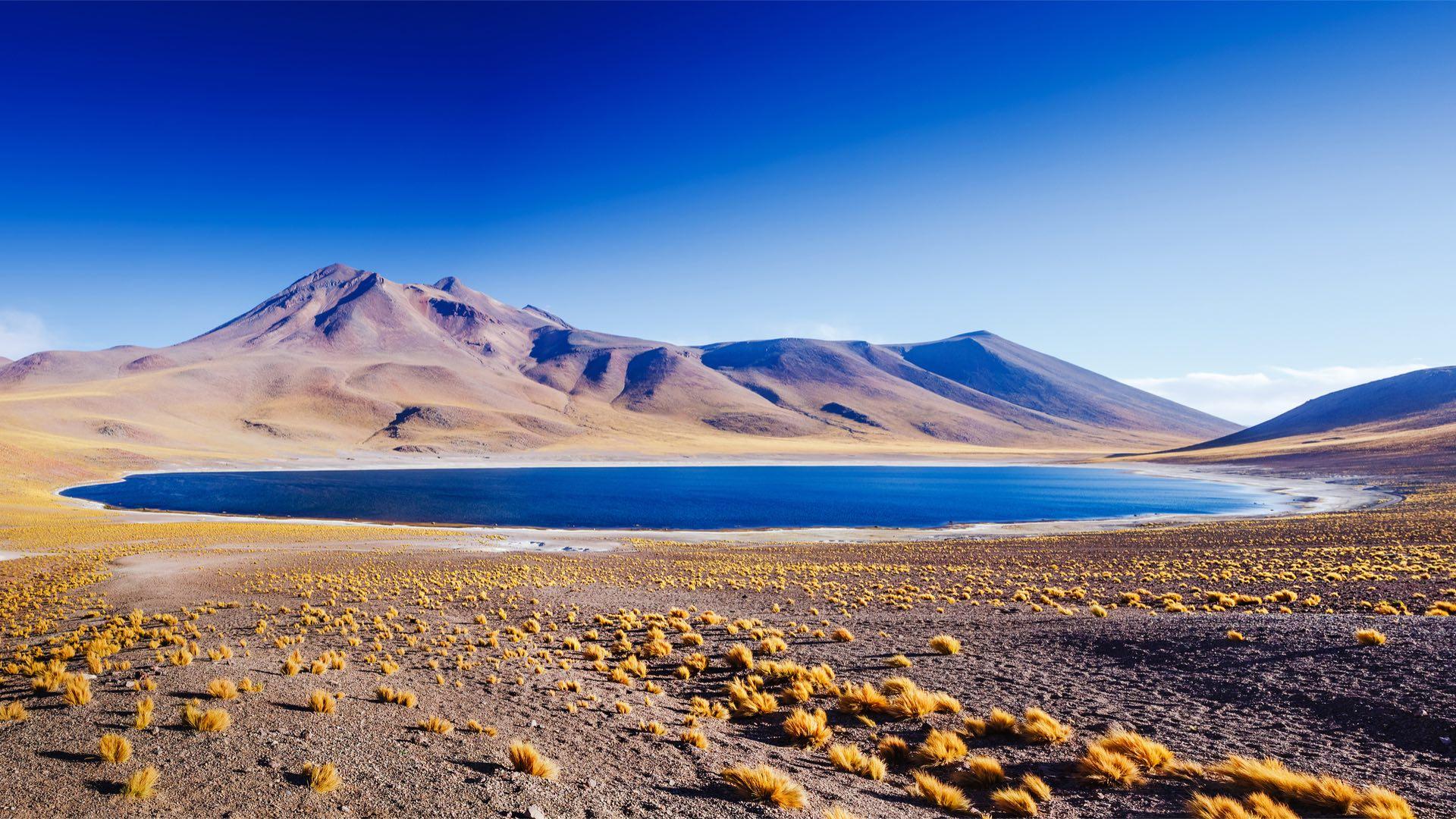 Chile | Hochland | ©Olga Danylenko/Shutterstock.com