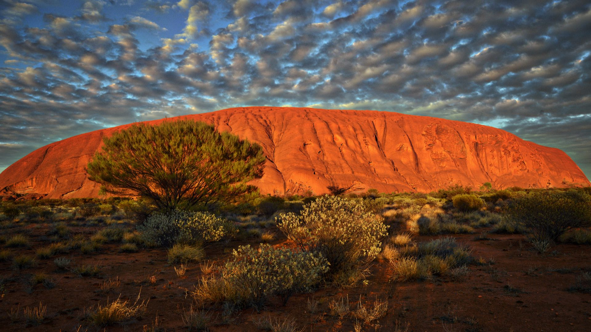 Australien | Uluru | ©Rajeev Rajagopalan/shutterstock.com