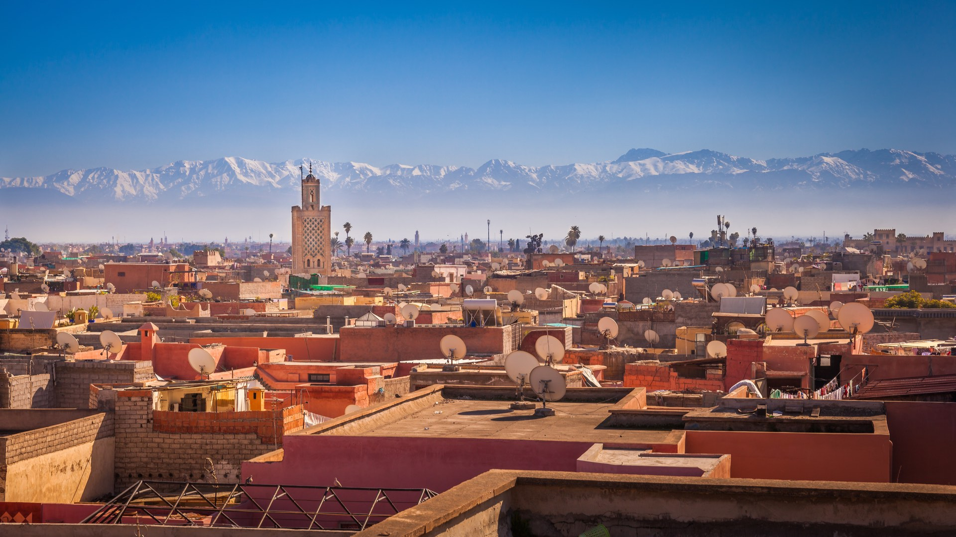 Marokko | Marrakesh | ©Maurizio De Mattei/Shutterstock.com
